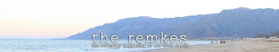 the remkes